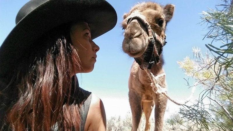 camel-farming-2